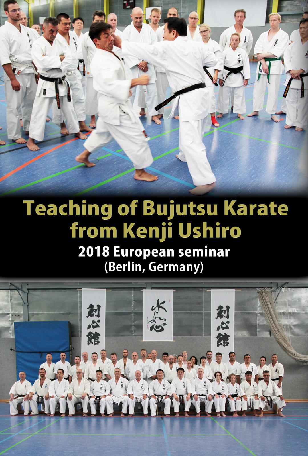 Teaching of Bujutsu Karate from Kenji Ushiro (2018 European seminar)